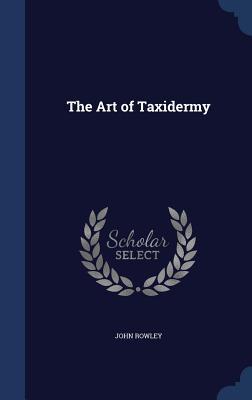 The Art of Taxidermy - Rowley, John