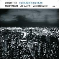 The Dreamer Is the Dream - Chris Potter