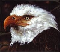 The Hawk Is Howling - Mogwai