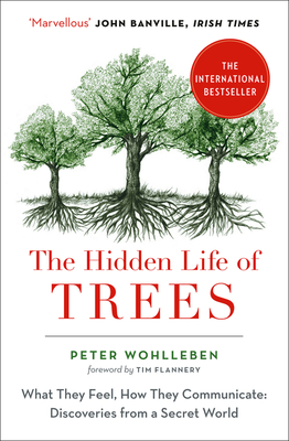 The Hidden Life of Trees: The International Bestseller - What They Feel, How They Communicate - Wohlleben, Peter