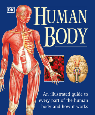 The Human Body - Baggaley, Ann, and Hamilton, Jill, and Perlmutter, Jane