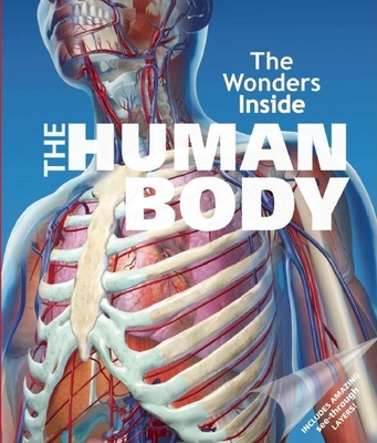 The Human Body - Stradling, Jan, and O'Brien, Erin (Editor), and Arnold, Robin (Consultant editor)
