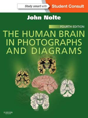 The Human Brain in Photographs and Diagrams - Nolte, John