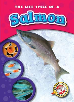 The Life Cycle of a Salmon - Sexton, Colleen