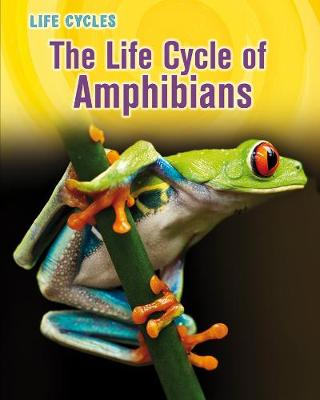 The Life Cycle of Amphibians - Stille, Darlene R.
