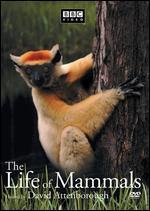 The Life of Mammals, Vol. 3