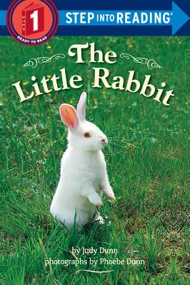 The Little Rabbit - Dunn, Judy, and Dunn, Phoebe (Photographer)