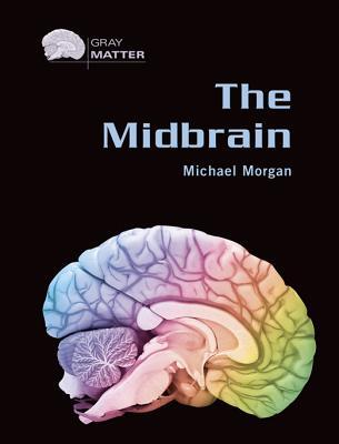The Midbrain - Morgan, Michael