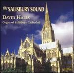 The Salisbury Sound