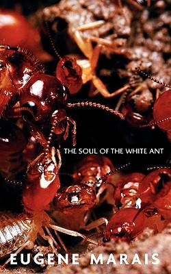 The Soul of the White Ant - Marais, Eugene N