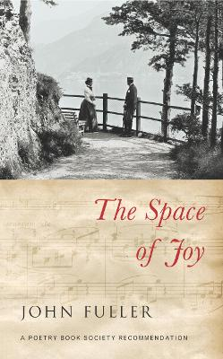 The Space of Joy - Fuller, John