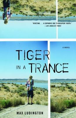 Tiger in a Trance - Ludington, Max
