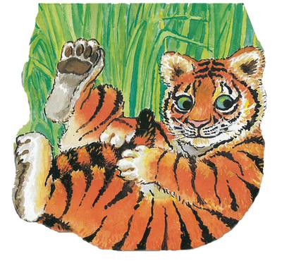 Tiger -
