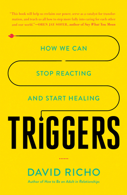Triggers: How We Can Stop Reacting and Start Healing - Richo, David