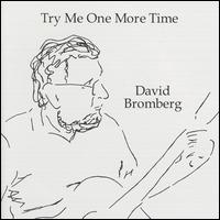 Try Me One More Time - David Bromberg