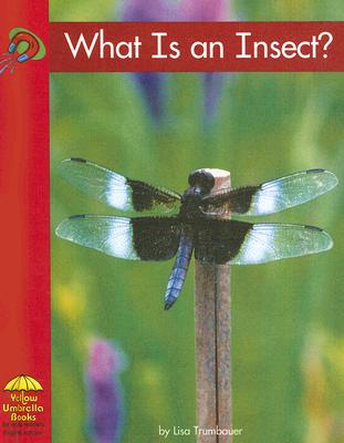 What Is an Insect? - Trumbauer, Lisa