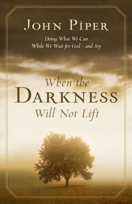 When the Darkness Will Not Lift: Doing What We Can While Waiting for God - and Joy - Piper, John