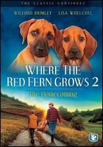 Where the Red Fern Grows, Part 2