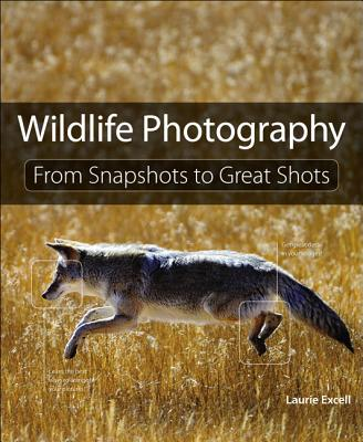 Wildlife Photography - Excell, Laurie