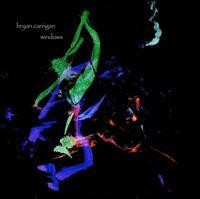 Windows - Bryan Carrigan