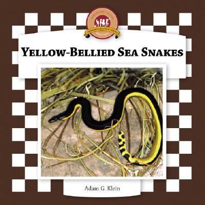 Yellow-Bellied Sea Snakes - Klein, Adam G