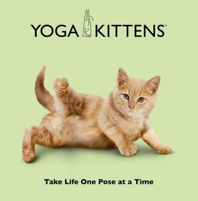 Yoga Kittens: Take Life One Pose at a Time -